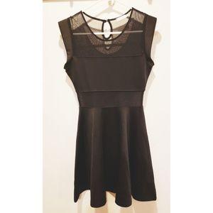 Tobi Skater Dress